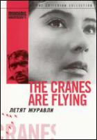 The cranes are flying = (Letyat zhuravli)