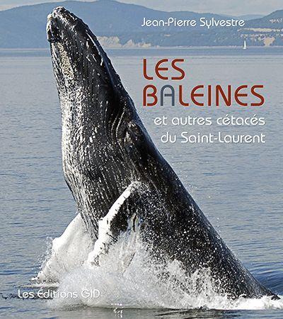 Les baleines et autres cétacés du Saint-Laurent