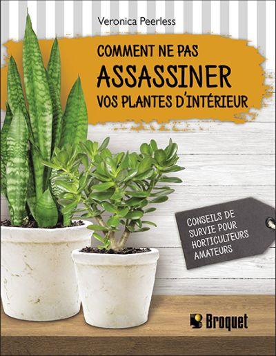Comment ne pas assassiner vos plantes d'intérieur : conseils de survie pour horticulteurs amateurs