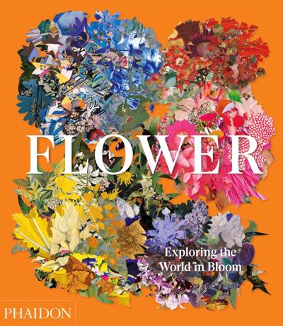 Flower : exploring the world in bloom.
