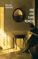 Une joie sans remède : roman /